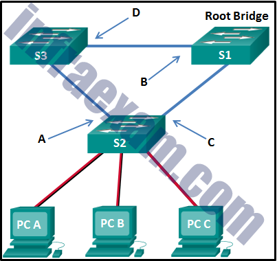 CCNA 2 v7 SRWE Final Exam Answers 13