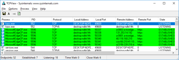 Screenshot of TCPView with the web browser processes highlighted.