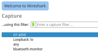Screenshot of the Wireshark Capture heading with the H1-eth0 interface selected