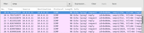 Screenshot of Wireshark packet capture with the first ICMP request highlighted