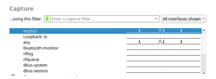 The screenshot displays the list of interfaces that are available. The interface enp0s3 is highlighted.