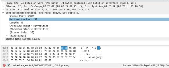 This screenshot displays the details of UDP
