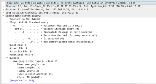 This screenshot displays the details of DNS queries