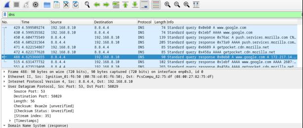 This screenshot displays the DNS response packet