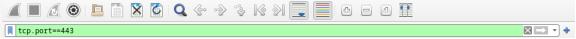 screenshot of applied tcp.port==443 filter