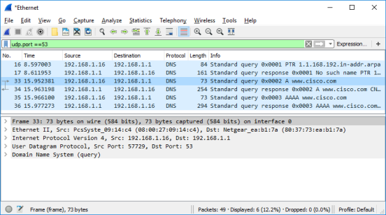 Screen shot of Wireshark DNS packet capture