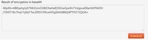 Screen shot of the Result of the encryption in base64.