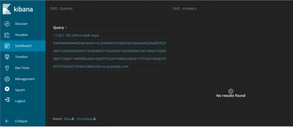 screenshot of dns query results