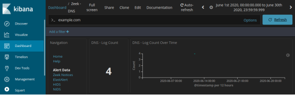 screenshot of dns log results after filtering for example.com