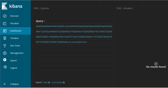 screenshot of dns query results after filtering for example.com